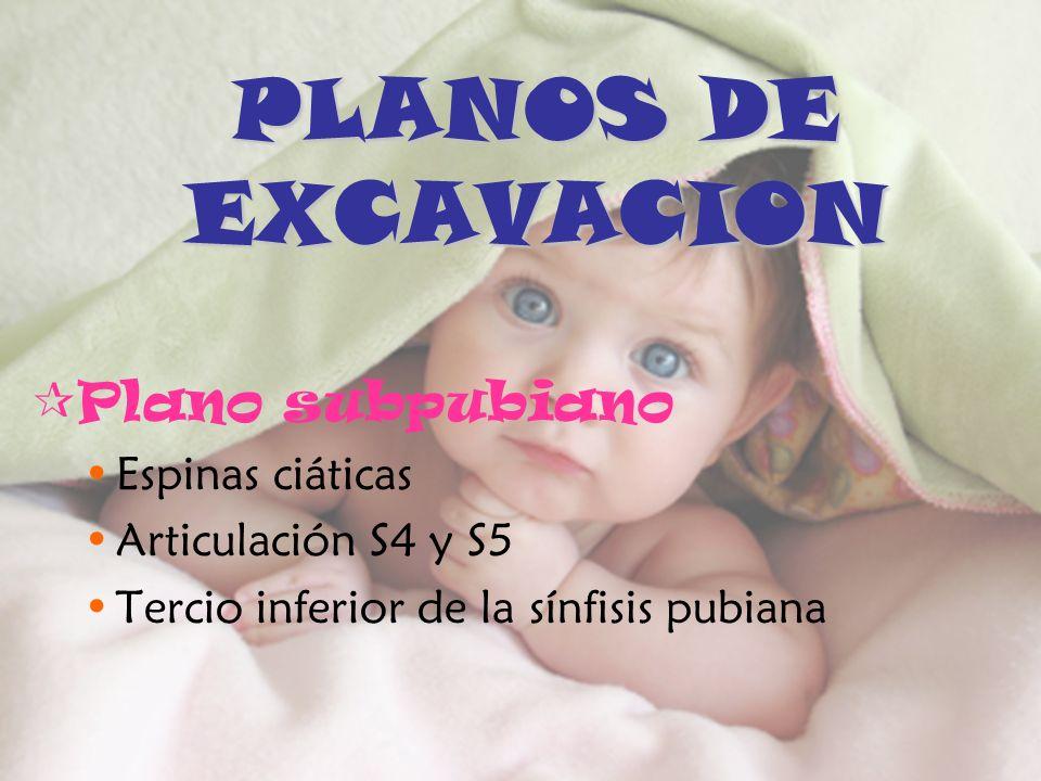 PLANOS DE EXCAVACION Plano subpubiano Espinas ciáticas