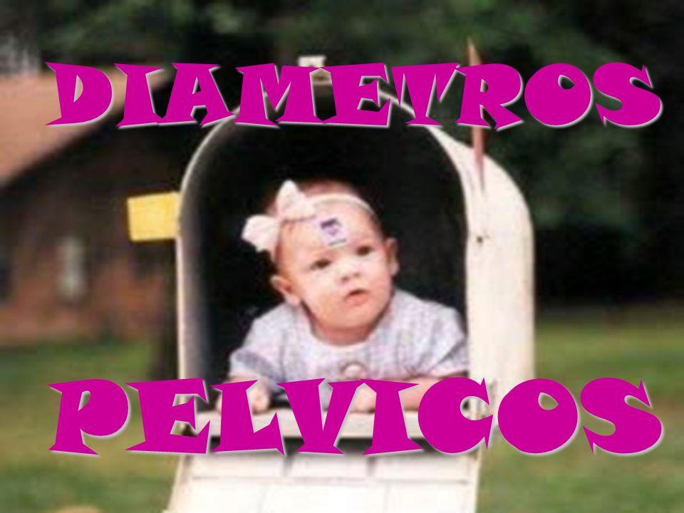 DIAMETROS PELVICOS