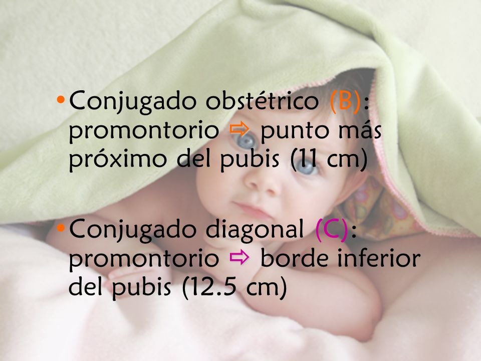 Conjugado obstétrico (B): promontorio  punto más próximo del pubis (11 cm)