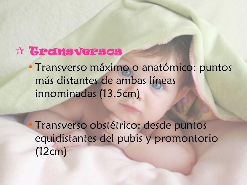 Transversos Transverso máximo o anatómico: puntos más distantes de ambas líneas innominadas (13.5cm)