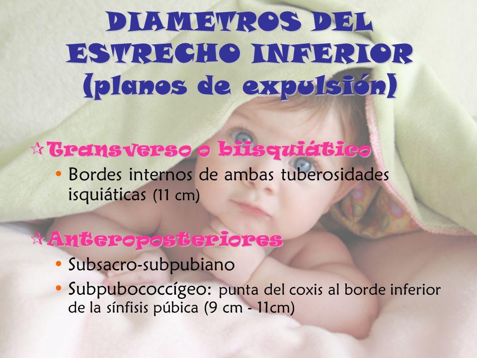 DIAMETROS DEL ESTRECHO INFERIOR (planos de expulsión)