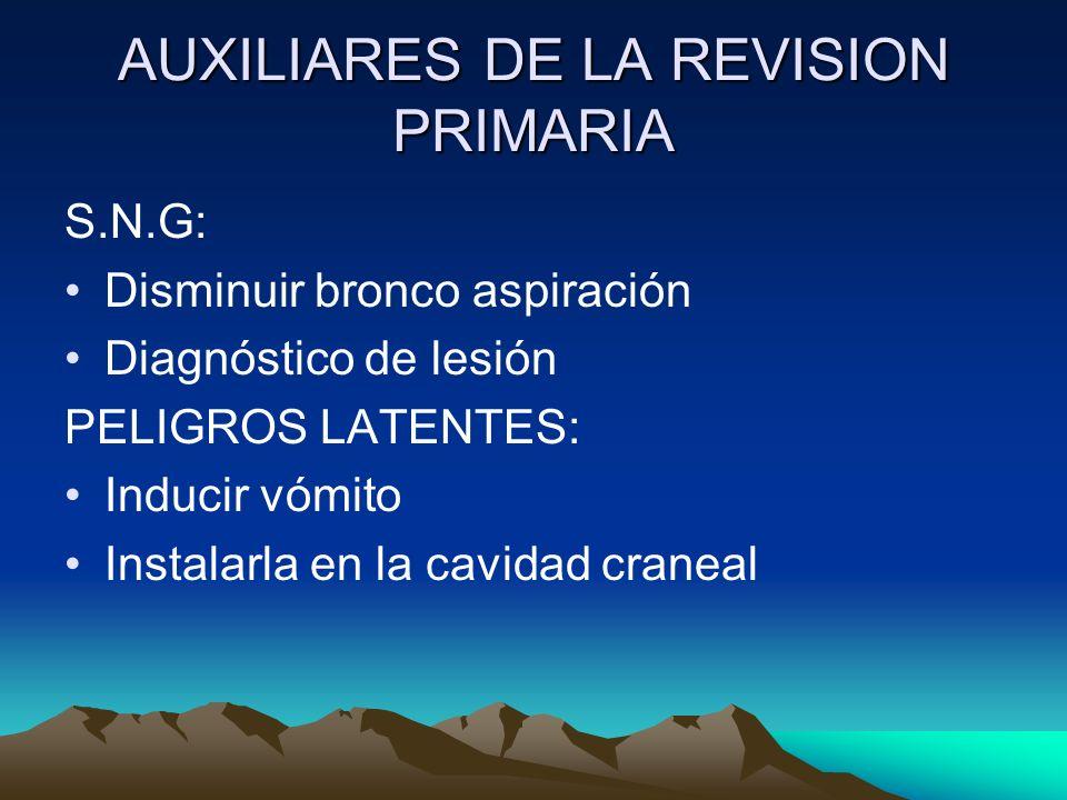AUXILIARES DE LA REVISION PRIMARIA