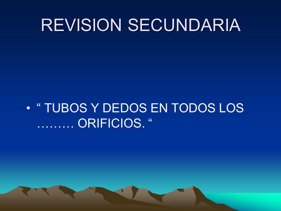 REVISION SECUNDARIA TUBOS Y DEDOS EN TODOS LOS ……… ORIFICIOS.