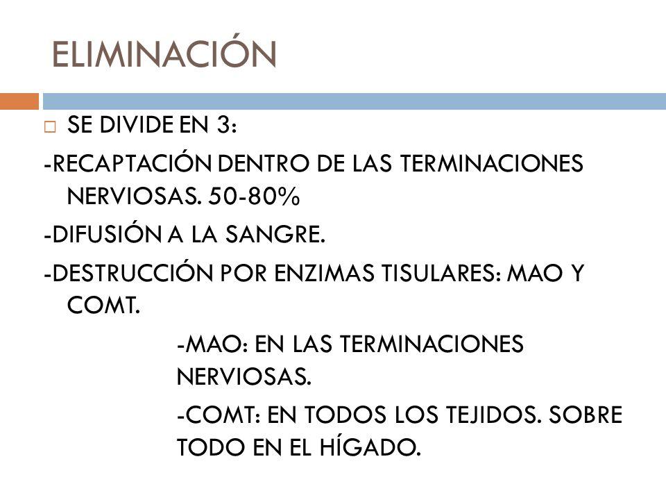 ELIMINACIÓN SE DIVIDE EN 3: