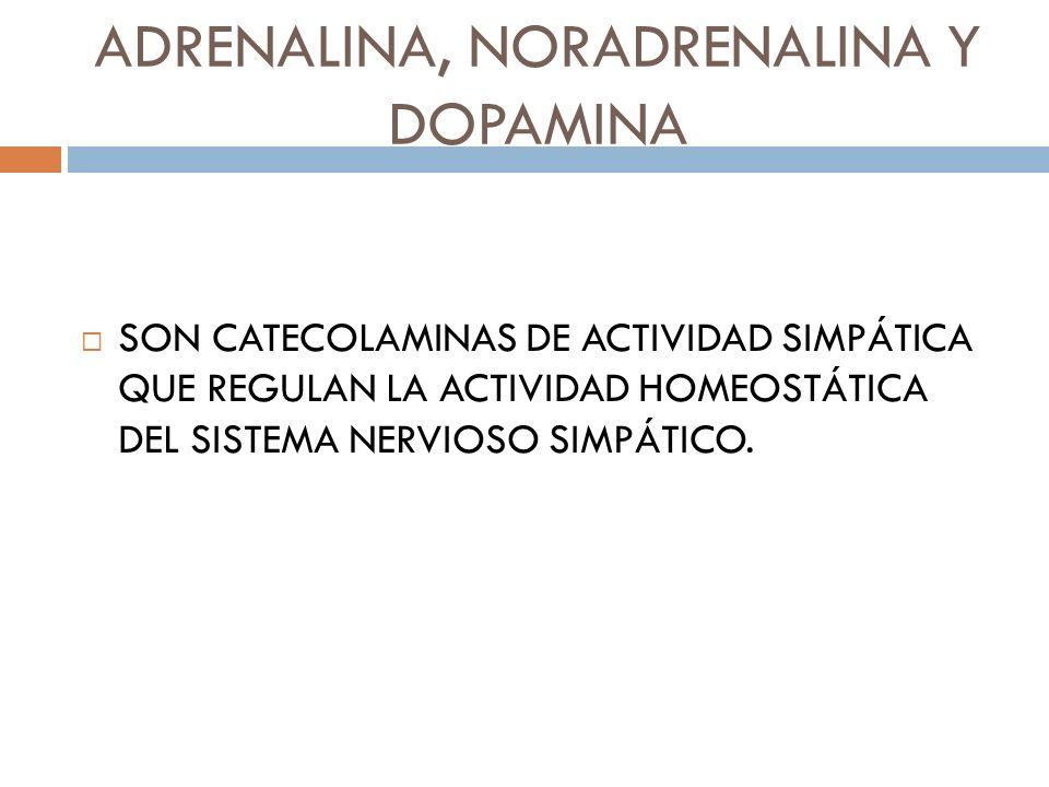 ADRENALINA, NORADRENALINA Y DOPAMINA