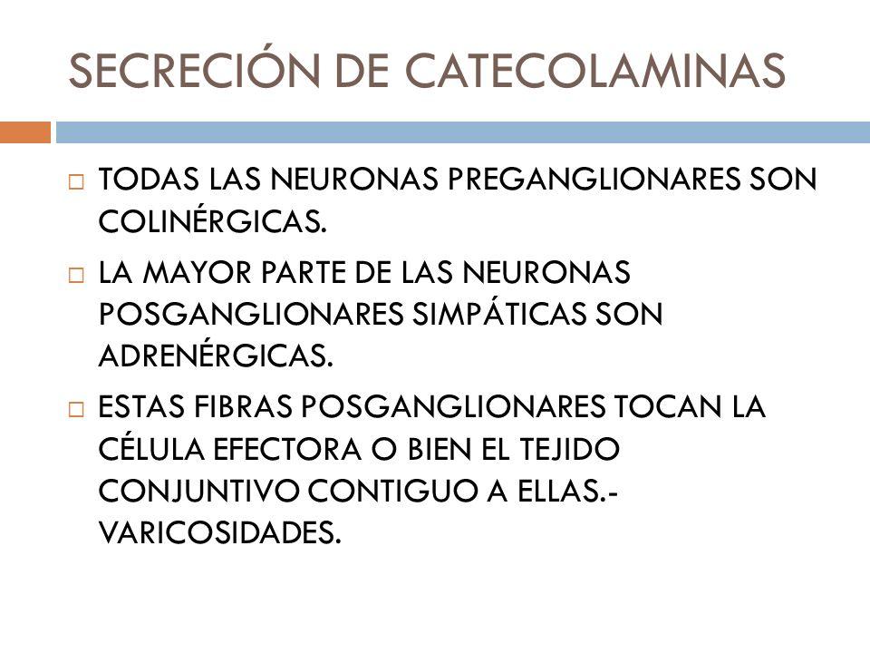 SECRECIÓN DE CATECOLAMINAS