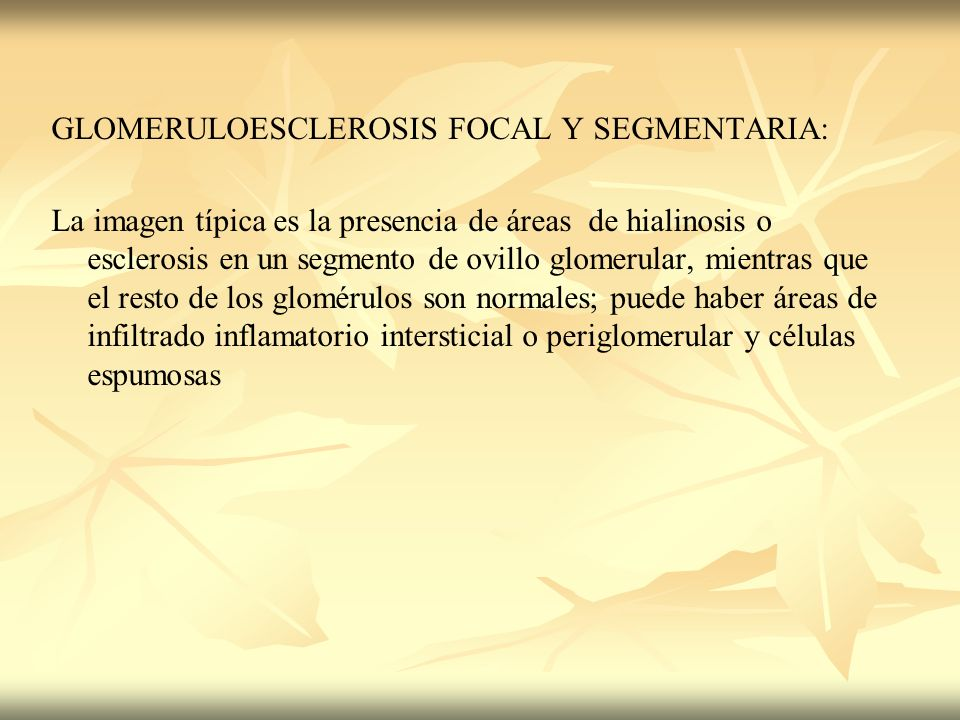 GLOMERULOESCLEROSIS FOCAL Y SEGMENTARIA: