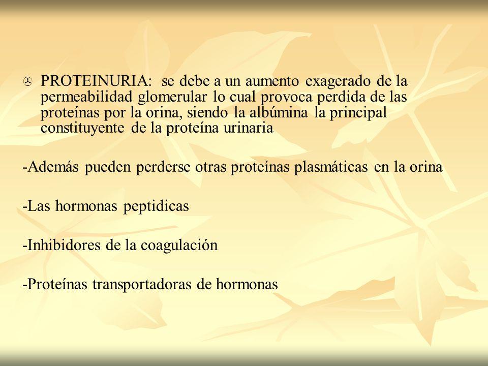 PROTEINURIA: se debe a un aumento exagerado de la permeabilidad glomerular lo cual provoca perdida de las proteínas por la orina, siendo la albúmina la principal constituyente de la proteína urinaria