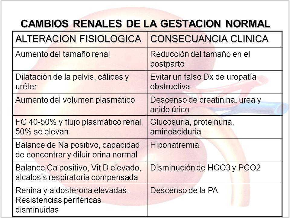 CAMBIOS RENALES DE LA GESTACION NORMAL