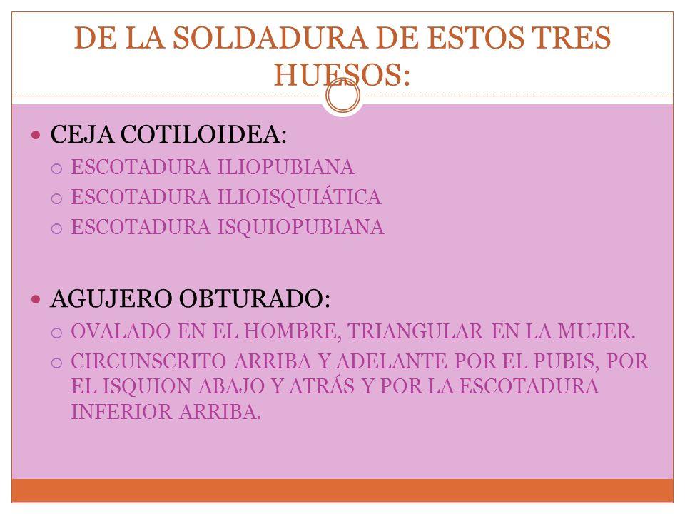 DE LA SOLDADURA DE ESTOS TRES HUESOS: