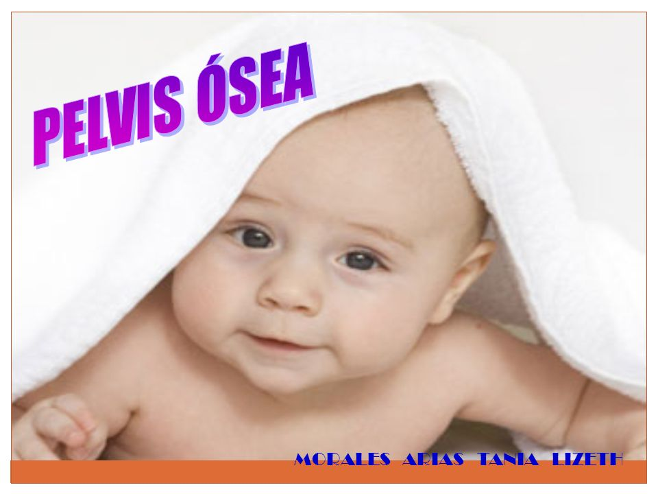 PELVIS ÓSEA MORALES ARIAS TANIA LIZETH