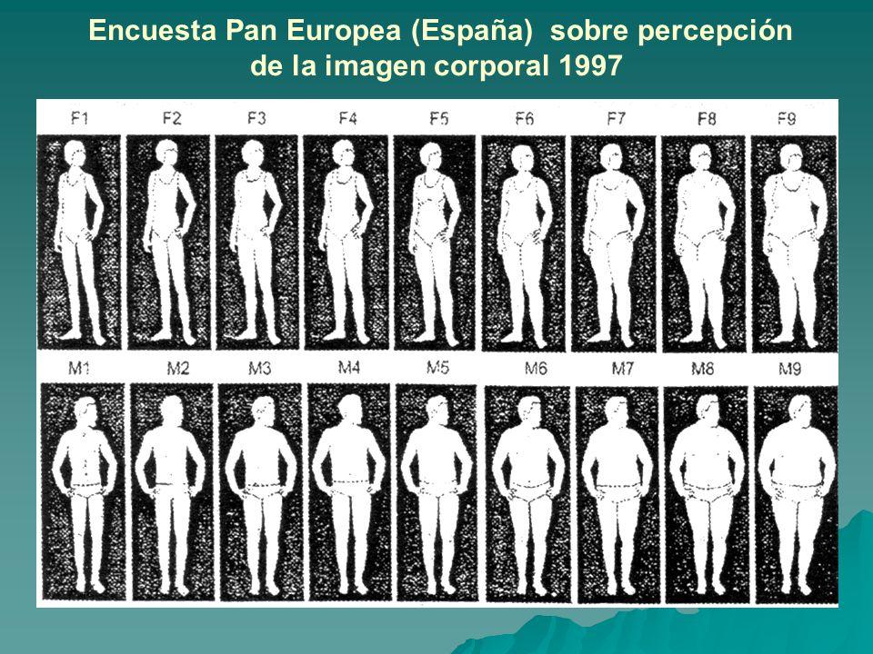 Encuesta Pan Europea (España) sobre percepción de la imagen corporal 1997