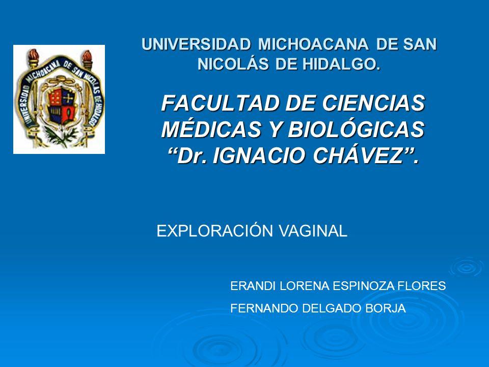 UNIVERSIDAD MICHOACANA DE SAN NICOLÁS DE HIDALGO.