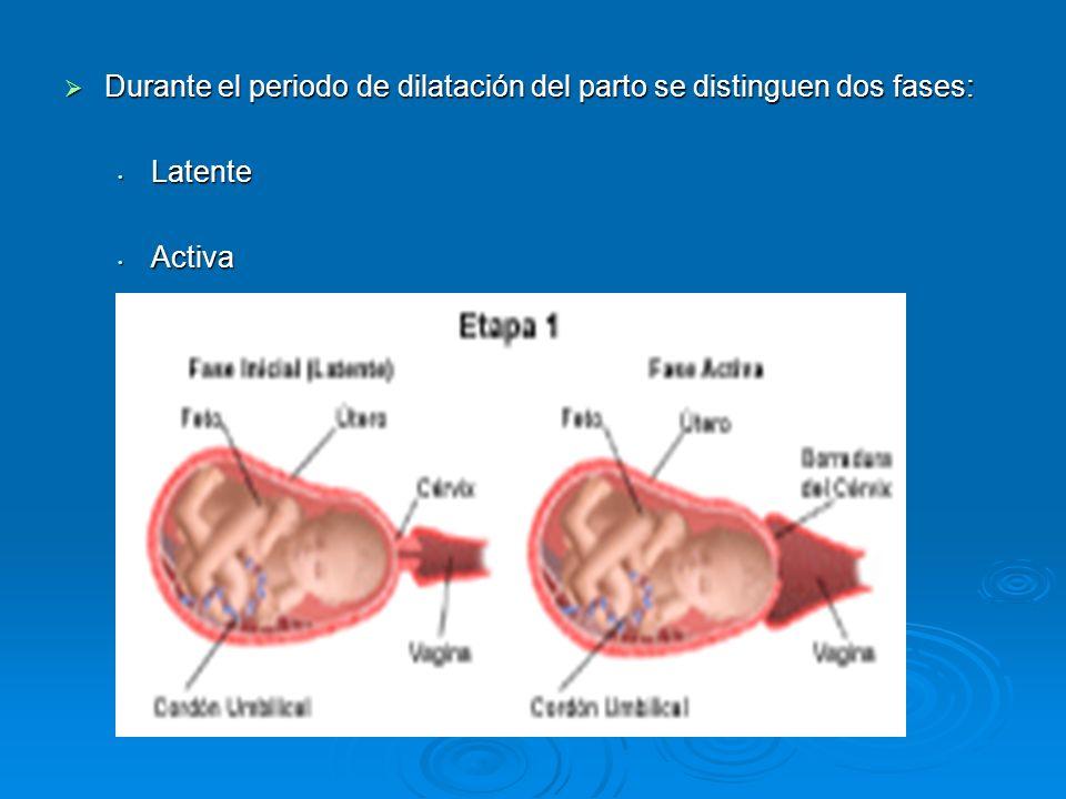 Durante el periodo de dilatación del parto se distinguen dos fases: