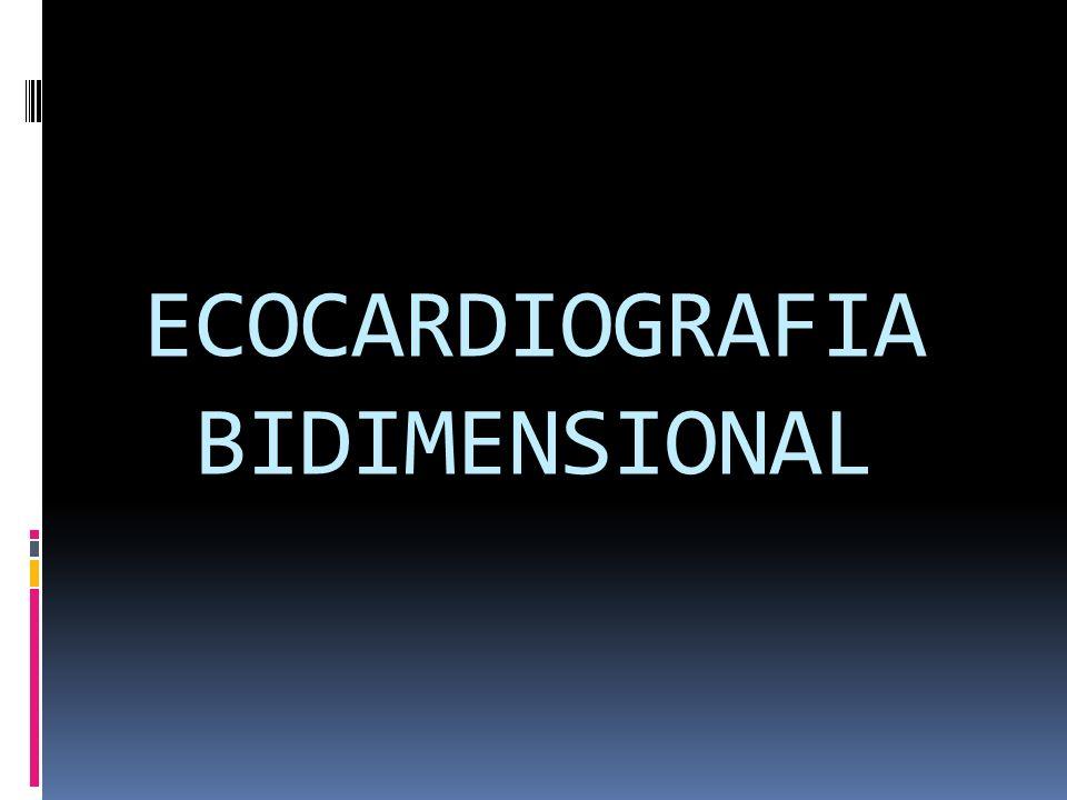 ECOCARDIOGRAFIA BIDIMENSIONAL