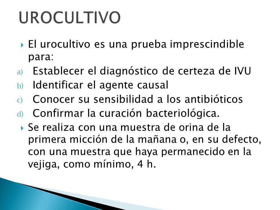 UROCULTIVO El urocultivo es una prueba imprescindible para: