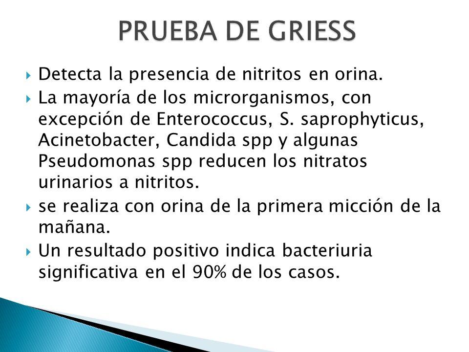 PRUEBA DE GRIESS Detecta la presencia de nitritos en orina.