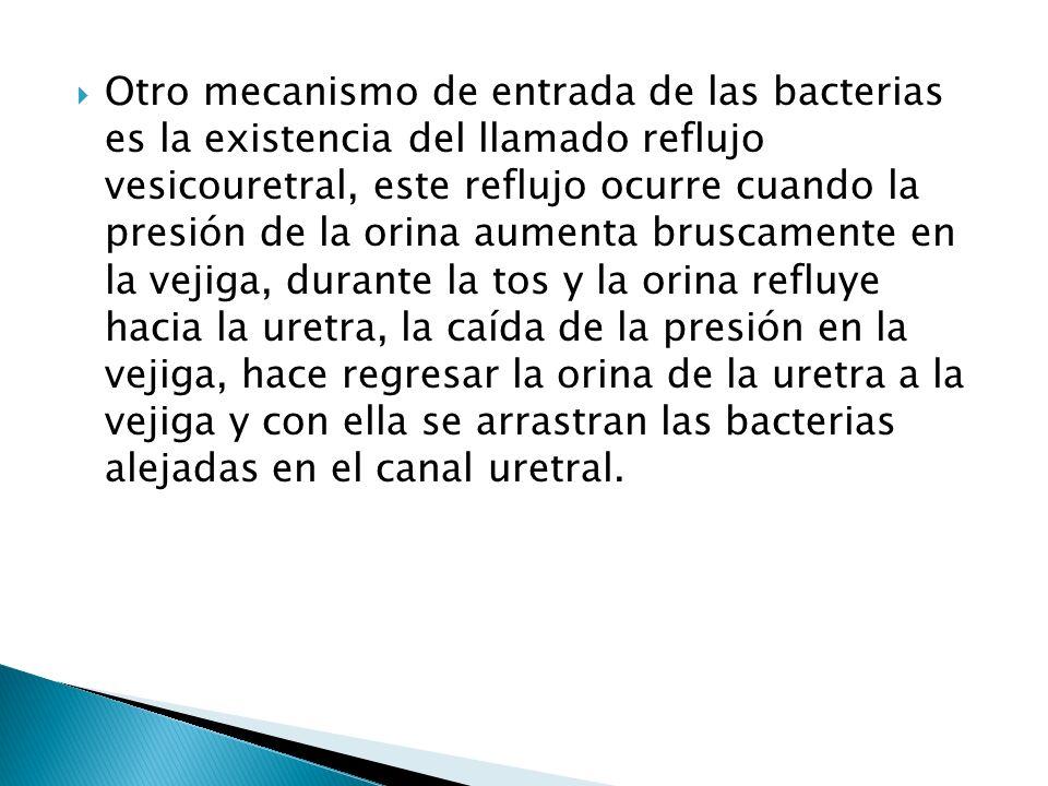 Otro mecanismo de entrada de las bacterias es la existencia del llamado reflujo vesicouretral, este reflujo ocurre cuando la presión de la orina aumenta bruscamente en la vejiga, durante la tos y la orina refluye hacia la uretra, la caída de la presión en la vejiga, hace regresar la orina de la uretra a la vejiga y con ella se arrastran las bacterias alejadas en el canal uretral.