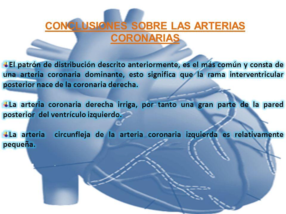 CONCLUSIONES SOBRE LAS ARTERIAS CORONARIAS