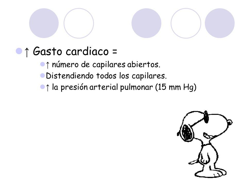 ↑ Gasto cardiaco = ↑ número de capilares abiertos.