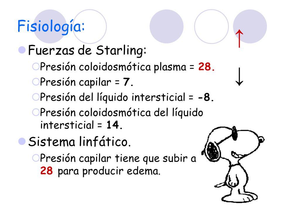 ↑ ↓ Fisiología: Fuerzas de Starling: Sistema linfático.