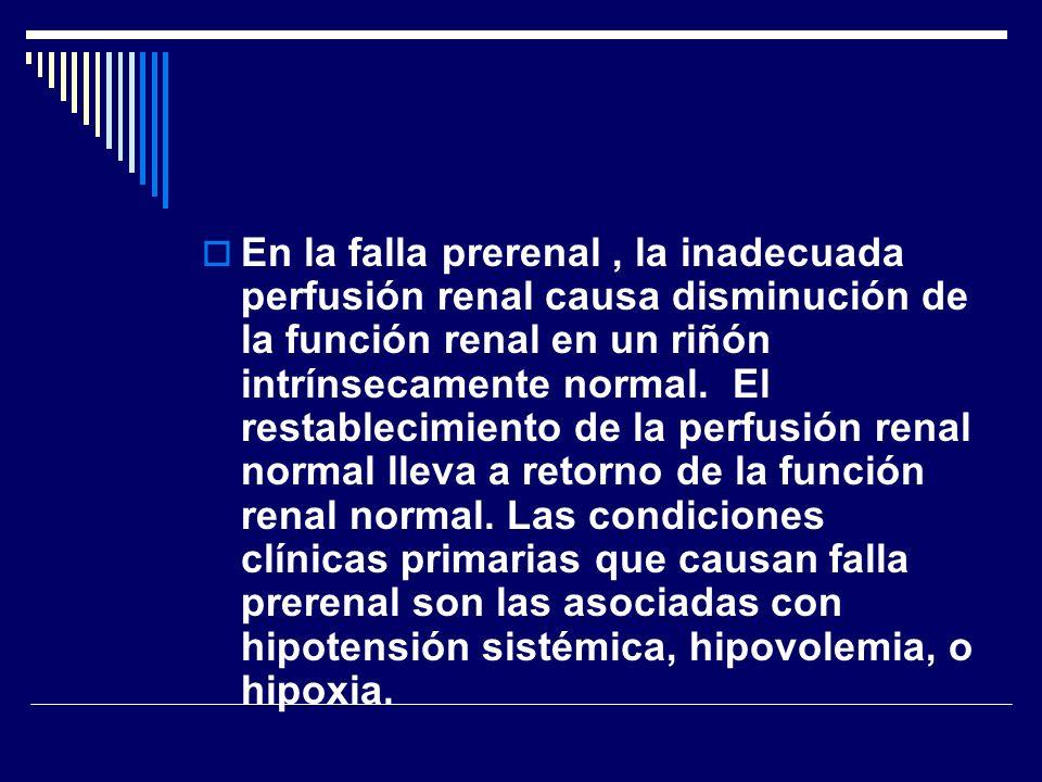 En la falla prerenal , la inadecuada perfusión renal causa disminución de la función renal en un riñón intrínsecamente normal. El restablecimiento de la perfusión renal normal lleva a retorno de la función renal normal.