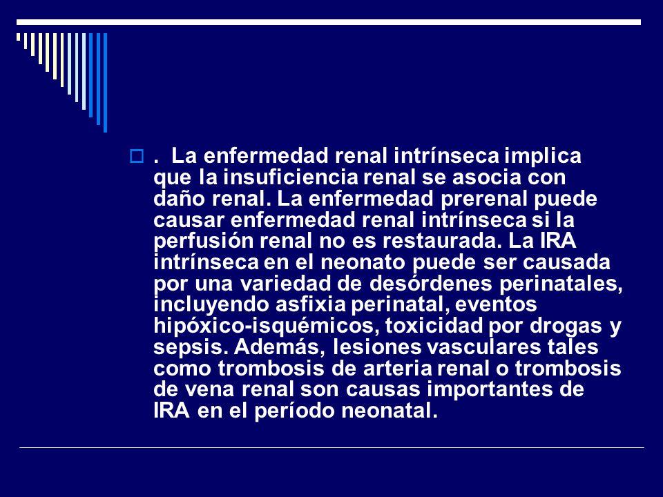 . La enfermedad renal intrínseca implica que la insuficiencia renal se asocia con daño renal.