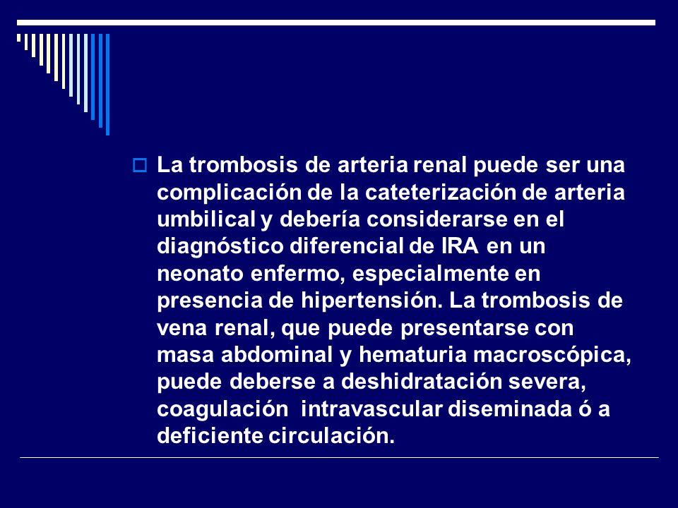 La trombosis de arteria renal puede ser una complicación de la cateterización de arteria umbilical y debería considerarse en el diagnóstico diferencial de IRA en un neonato enfermo, especialmente en presencia de hipertensión.