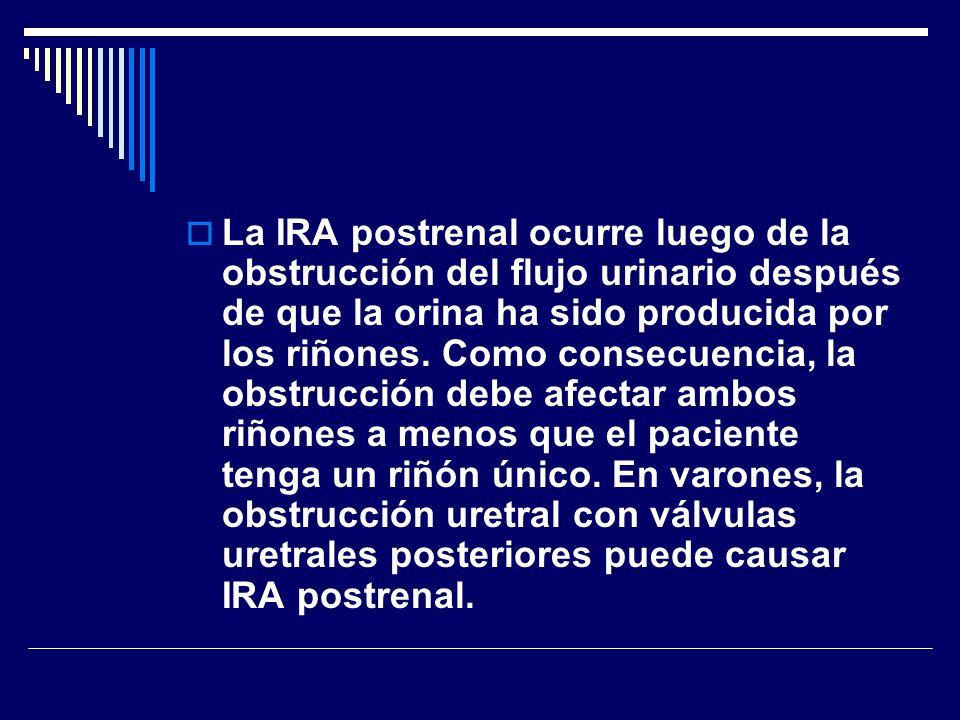 La IRA postrenal ocurre luego de la obstrucción del flujo urinario después de que la orina ha sido producida por los riñones.