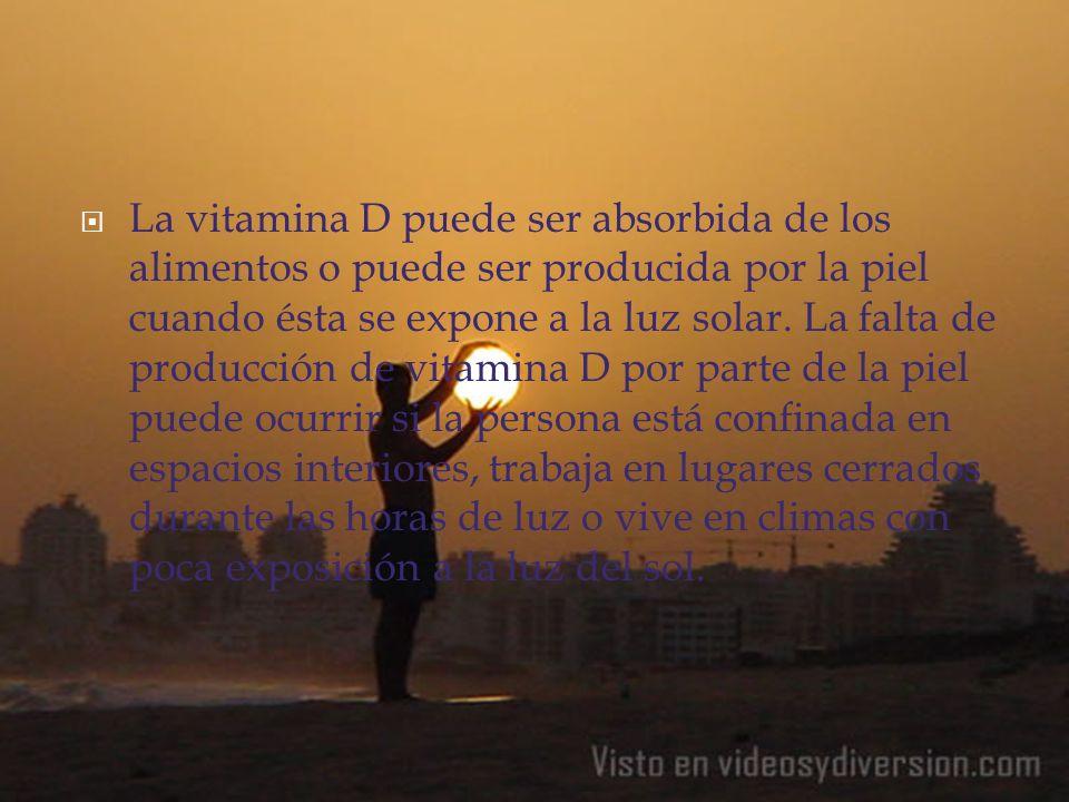 La vitamina D puede ser absorbida de los alimentos o puede ser producida por la piel cuando ésta se expone a la luz solar.