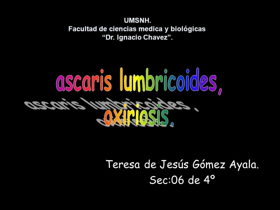 Teresa de Jesús Gómez Ayala. Sec:06 de 4º