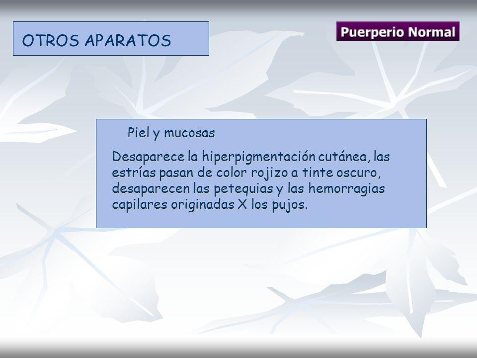 OTROS APARATOS Piel y mucosas