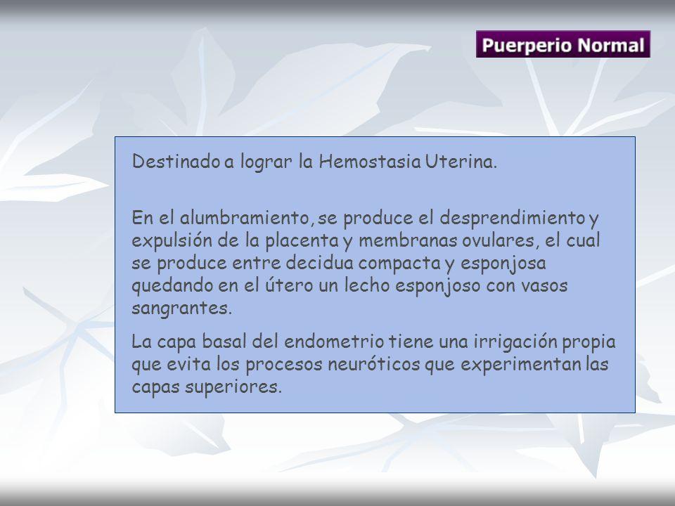 Destinado a lograr la Hemostasia Uterina.