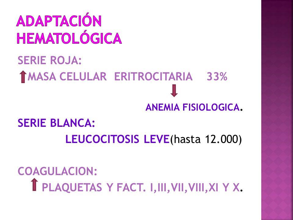 ADAPTACIÓN hematológica