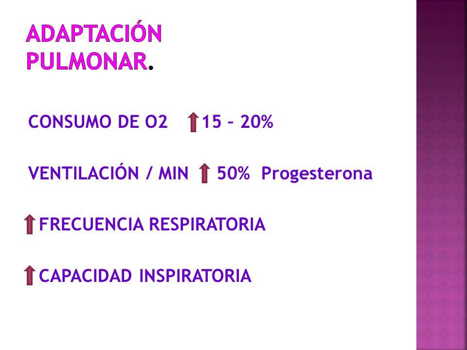 ADAPTACIÓN PULMONAR. CONSUMO DE O2 15 – 20%
