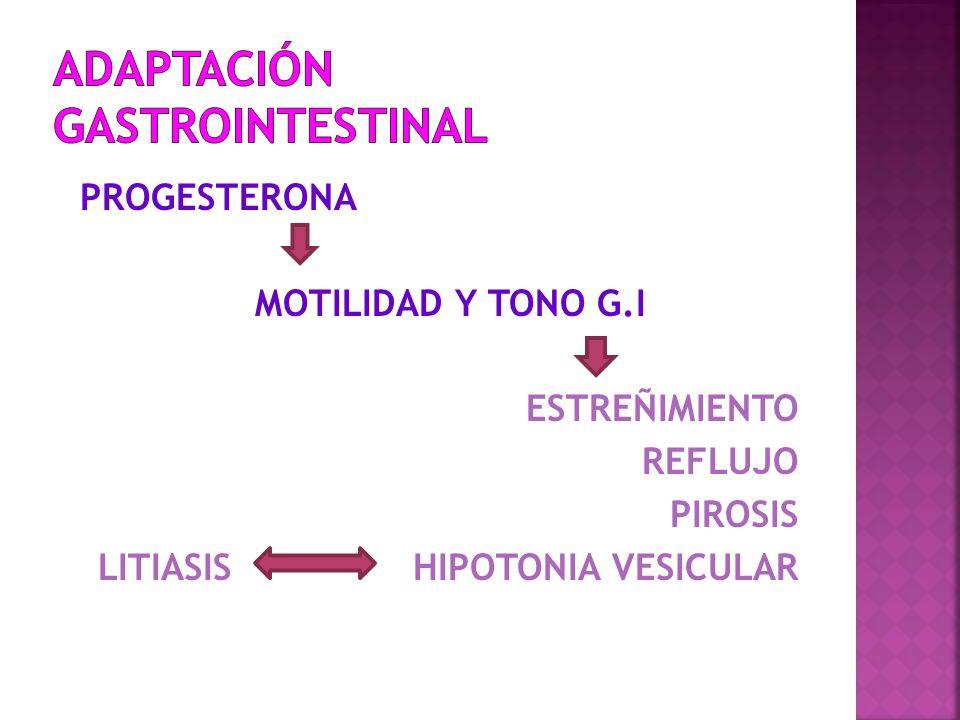 ADAPTACIÓN GASTROINTESTINAL