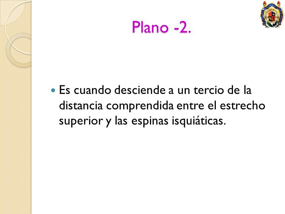 Plano -2.Es cuando desciende a un tercio de la distancia comprendida entre el estrecho superior y las espinas isquiáticas.