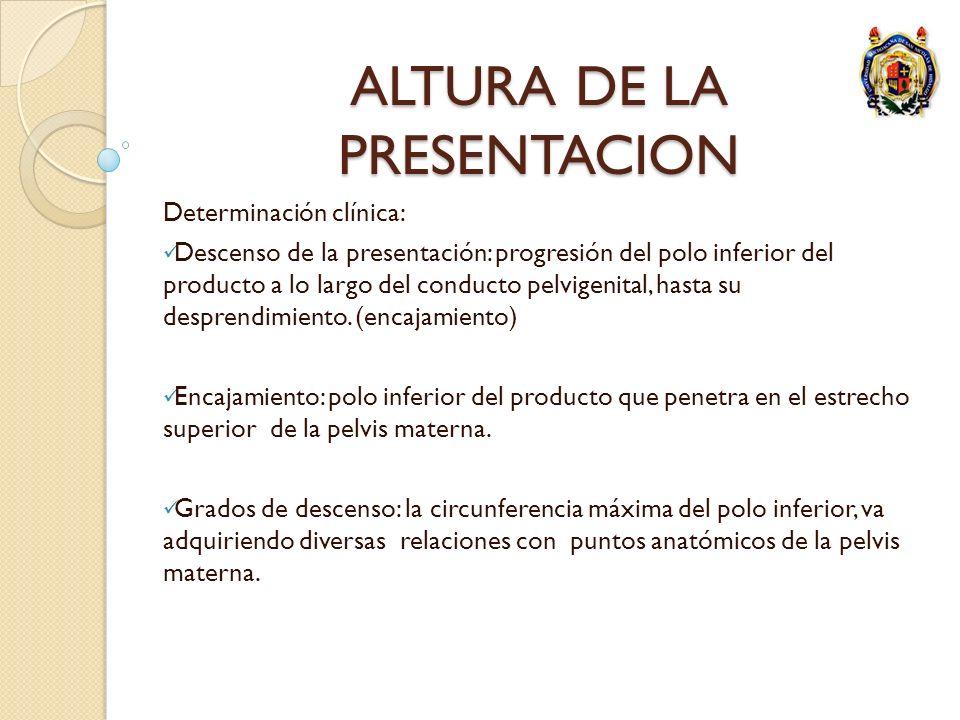 ALTURA DE LA PRESENTACION