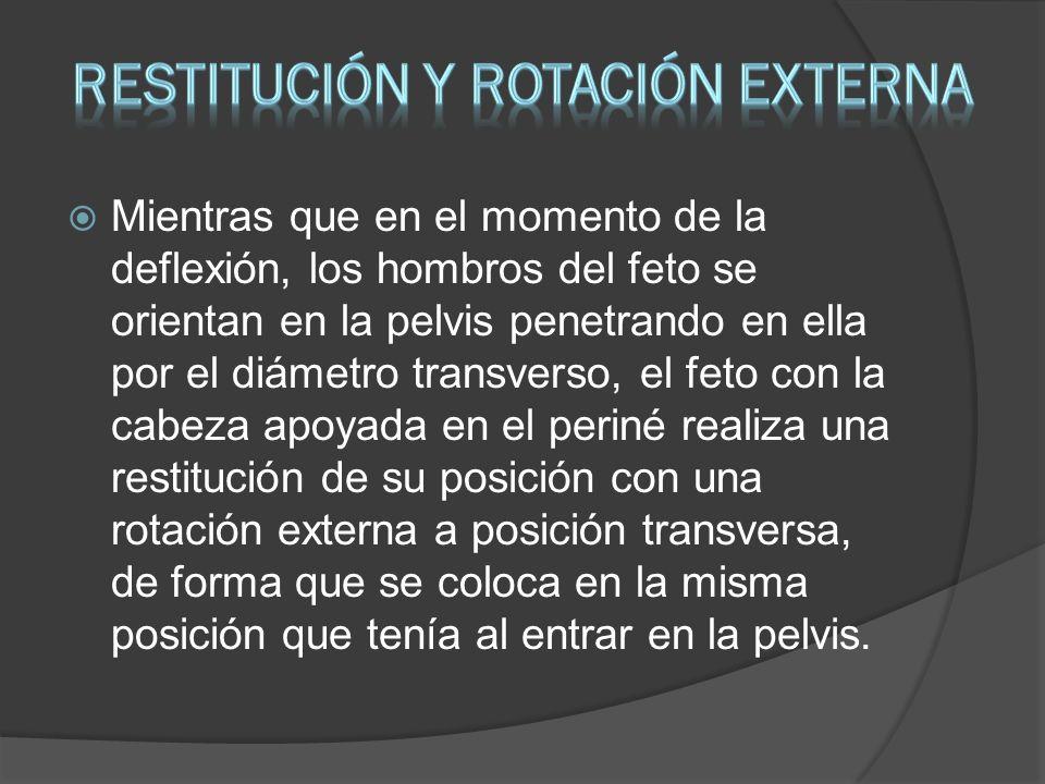 RESTITUCIÓN Y ROTACIÓN EXTERNA