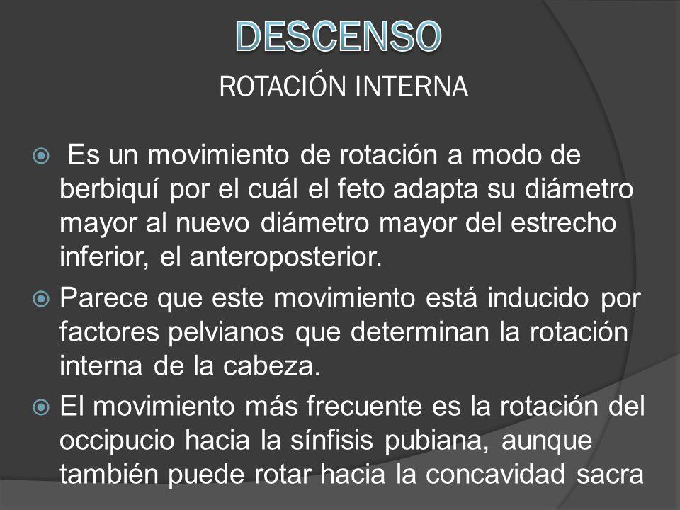 DESCENSO ROTACIÓN INTERNA