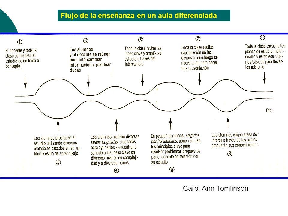 Flujo de la enseñanza en un aula diferenciada