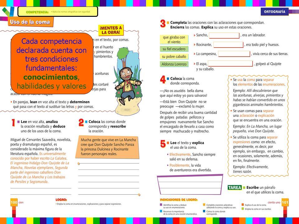 Cada competencia declarada cuenta con tres condiciones fundamentales: conocimientos, habilidades y valores