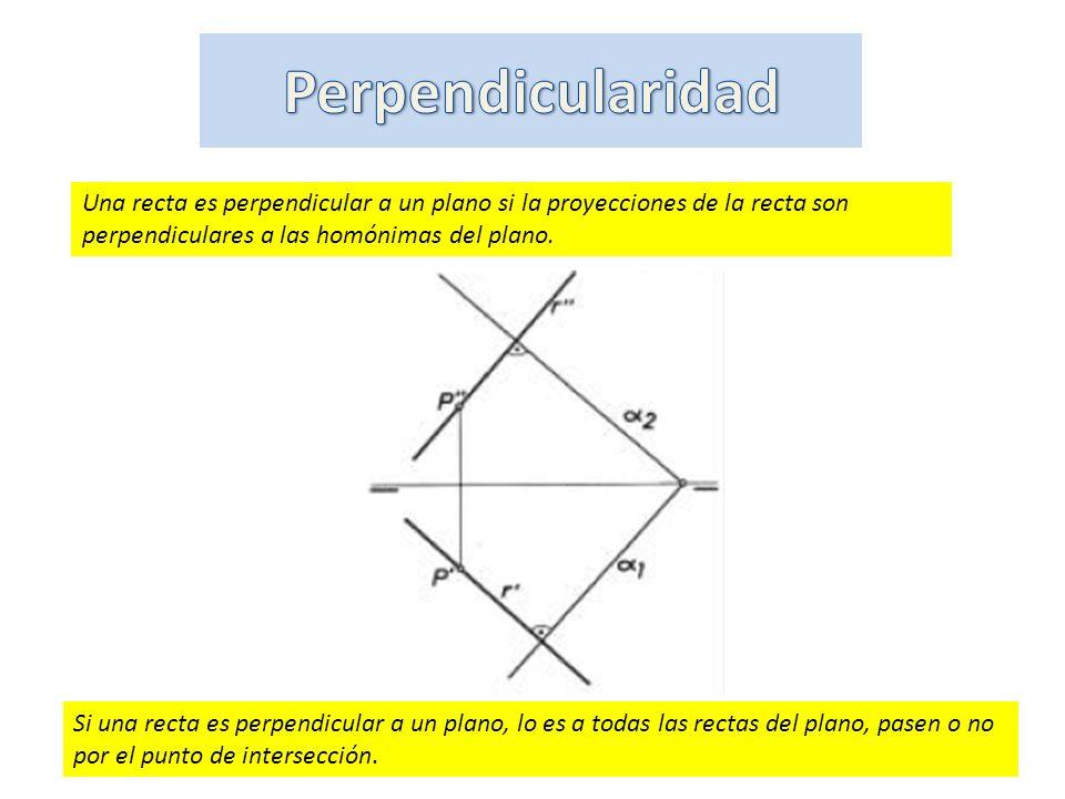 Perpendicularidad Una recta es perpendicular a un plano si la proyecciones de la recta son perpendiculares a las homónimas del plano.