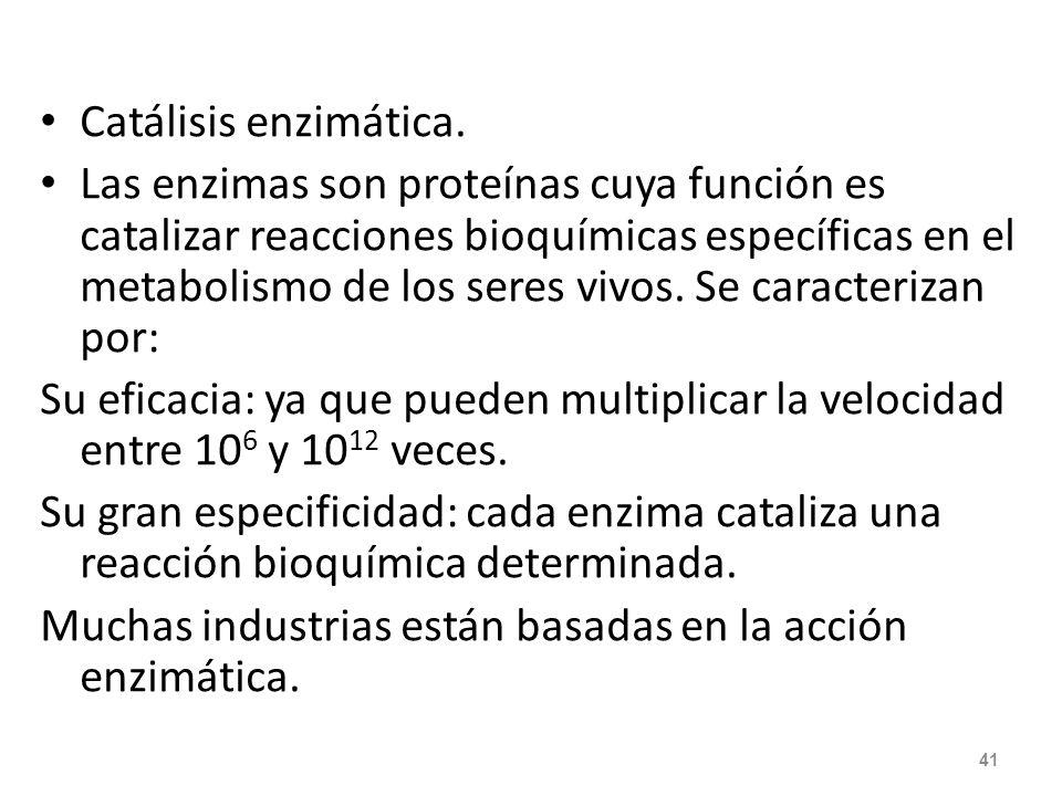 Catálisis enzimática.