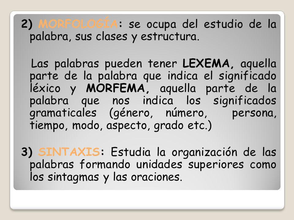 2) MORFOLOGÍA: se ocupa del estudio de la palabra, sus clases y estructura.