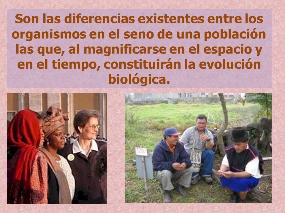 Son las diferencias existentes entre los organismos en el seno de una población las que, al magnificarse en el espacio y en el tiempo, constituirán la evolución biológica.