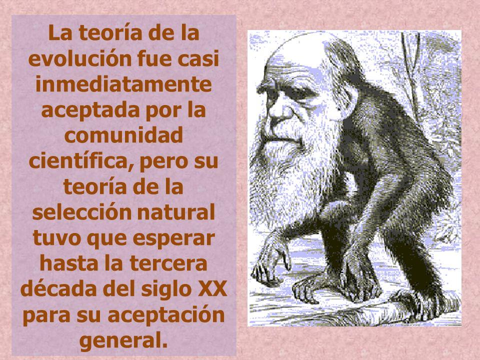 La teoría de la evolución fue casi inmediatamente aceptada por la comunidad científica, pero su teoría de la selección natural tuvo que esperar hasta la tercera década del siglo XX para su aceptación general.