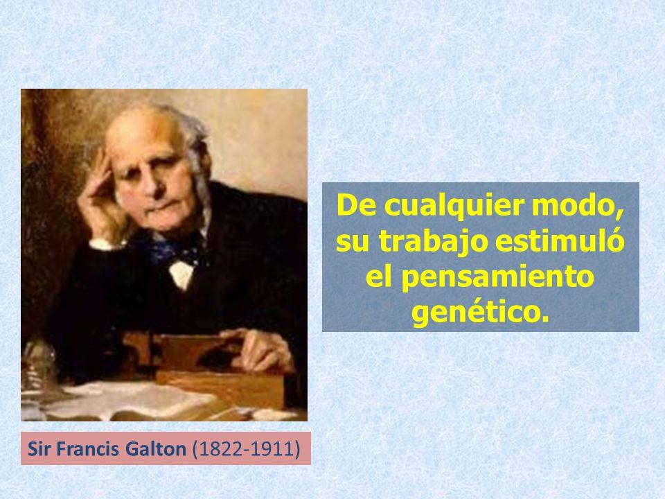 De cualquier modo, su trabajo estimuló el pensamiento genético.