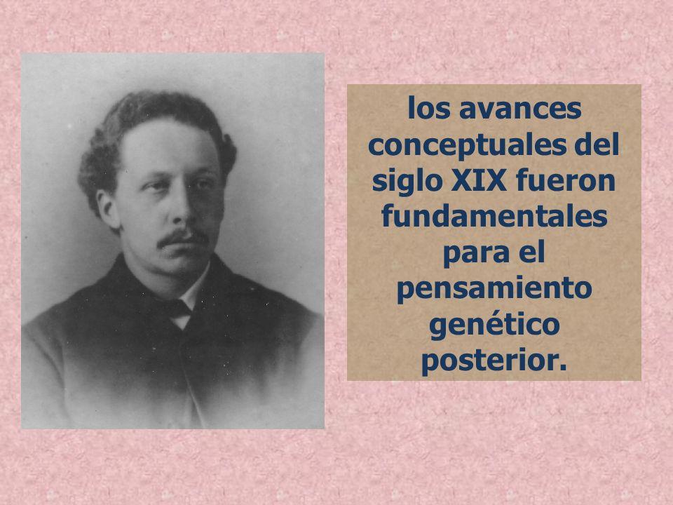 los avances conceptuales del siglo XIX fueron fundamentales para el pensamiento genético posterior.