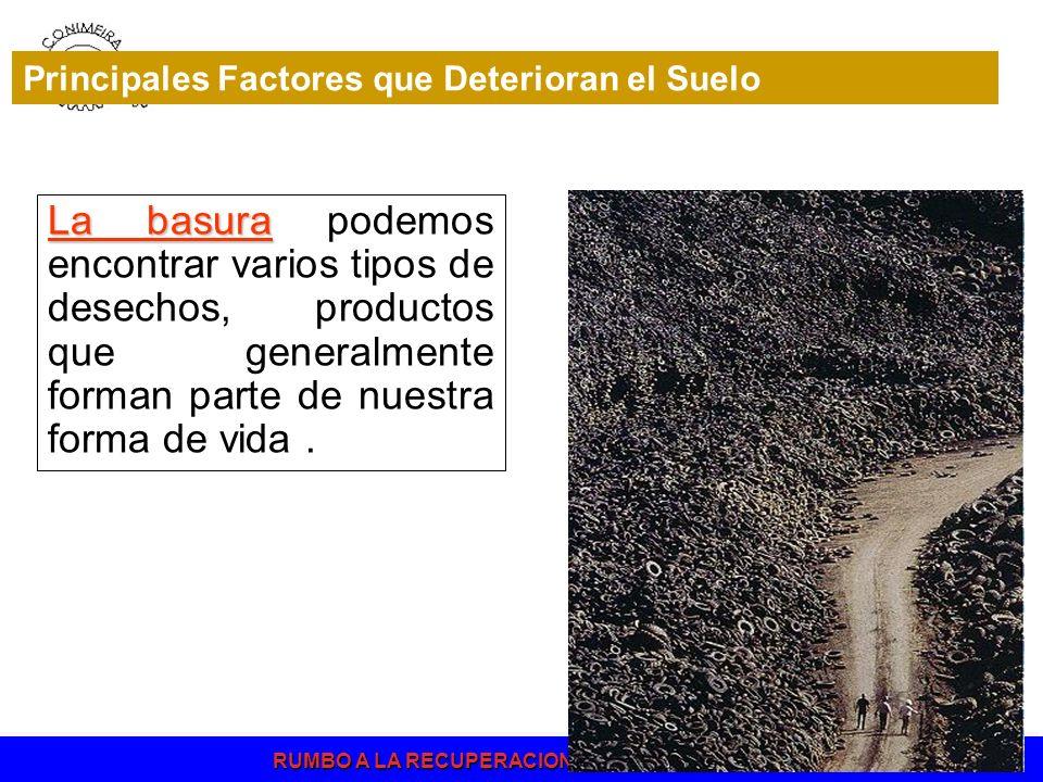 Principales Factores que Deterioran el Suelo